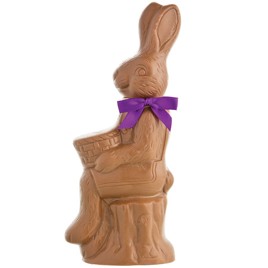 Bunny On Log